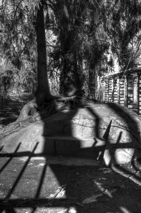 shadows2_tn